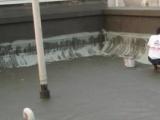 陵水屋面防水公司 板面開裂