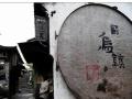 江南一带哪里好玩|杭州、苏州+枕水乌镇西栅三日游