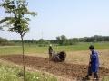 140亩农场低价转让(转让费面议)