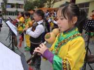 广州黄埔葫芦丝培训广州黄埔葫芦丝老师广州哪里学葫芦丝好