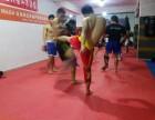 深圳踢拳训练 强身搏击俱乐部