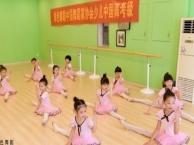 武汉三镇少儿舞蹈专业培训民族舞街舞拉丁舞