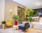 珠海专业植物租摆,植物租赁,绿植租摆