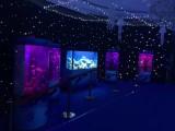广州海狮表演出租配资开户 电话 洋清水族海洋生物展租赁公司