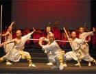 嵩山少林寺文武学校和普通武术学校有什么差别?