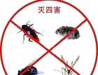 灭蟑螂,灭鼠,绿色环保,无效退款!