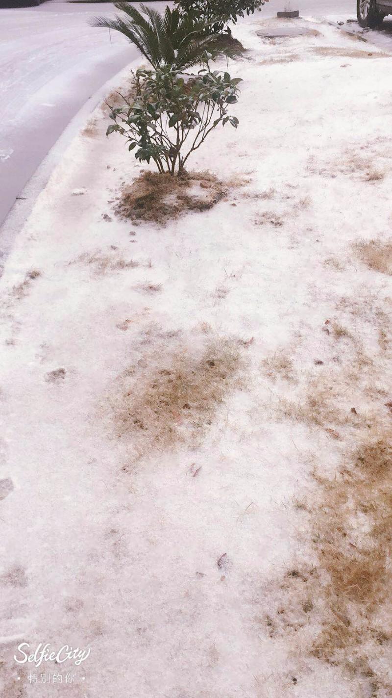 市内 第一场雪