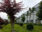 工业集聚区众品路 仓库 2300平米,价格面议