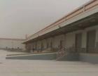 出租:常州机场附近标准仓库20000平方,可分租