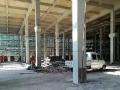 滨海厂房17500平共两栋 三层一楼层高10.8米