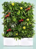 西安生态绿植墙 仿真绿植墙专业设计施工