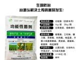 功能菌防病专用腐霉菌立枯病镰刀菌黑根霉生物防治