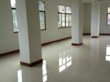 出租 新建房 共8层 有一房一厅 二房一厅 大单间