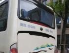 南京周边游 长短途包车 会议 婚庆 班车等客车租赁