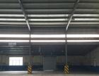 青年西路标准钢结构厂房出租(可分割)