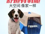 深圳言语萌宠 宠物托运服务 全国宠物托运 空运 汽运火车