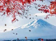 大连哪里可以学习日语 大连育才日语零基础留学班开课了