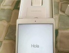 国行ipad mini 2 全新16G 插卡版