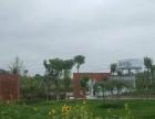 中节能金堂环保产业园大气呈现