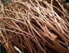 广饶废紫铜线废电缆回收价格