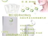 初慕松茸美白祛斑面膜代理|夏季热销面膜