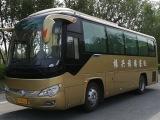 东营往返鹤峰来凤宣恩恩施汽车团体包车出租配司机9-55座各种
