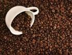 法国咖啡豆怎么进口到国内