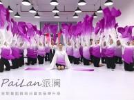 深圳派澜舞蹈短期集训/中国舞暑假培训班招生啦~