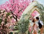 上海宝山万达澳帝摄影送免费定制晶钻婚纱