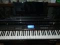 星海电子钢琴
