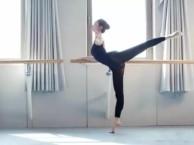 蒲黄榆附近舞蹈考级 中国舞民族舞芭蕾舞拉丁舞街舞爵士舞等培训