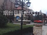 山东太阳能庭院灯烟台造型太阳能灯景观灯路灯