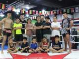 北京青少年搏擊培訓班-青少年散打培訓班-暑假少兒散打培訓班