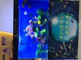 海鲜池定制 广州海鲜池定制 洋清水族