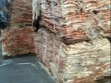 大牛皮 整张公牛皮 进口高档皮具原料 厂家经销 大量批发盐湿牛皮