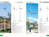 中山特价优惠 LED风光互补太阳能路灯 4米LED路灯  节能环
