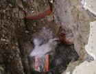 东莞工厂消地下管道漏水了怎么办 华探管道探测公司