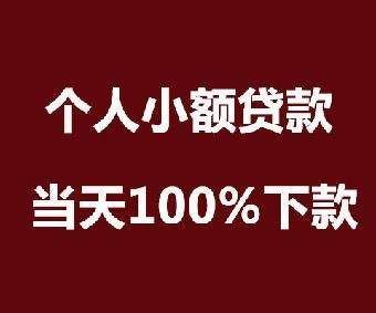 芜湖南陵大学生创业无抵押贷款