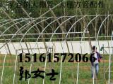 安徽铜陵狮子山葡萄622大棚管25 1.5 6.4米22 1