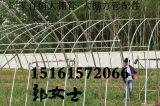 湖南株洲石峰温室喷灌系统蔬菜大棚管最低价格行情