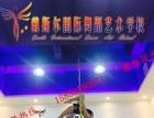 台州哪里有专业的酒吧领舞学校