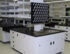 北京直销实验室家具实验台 通风柜 实验柜体 可定制