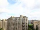 晓园顶楼复式 空中别墅 豪华装修 新出急租房
