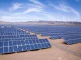 廠家批發晶天光伏組件全新足功率100W瓦單晶太陽能電池板