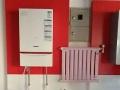 专业销售壁挂炉、净水器,专业壁挂炉维修安装