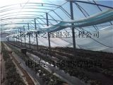 鹤壁开封平顶山三门峡哪有专业的温室大棚施工队伍