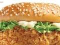 汉堡店设备材料供应加盟 西餐 投资金额 1万元以下