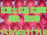 江干区红富士苹果价格 ..25E