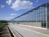 内蒙古 玻璃智能温室大棚造价 工程承接