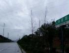 华星路附近 厂房 1600平米